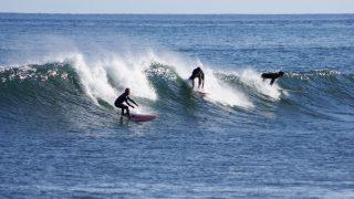 若い人だけのスポーツなのか!?サーフィンを始めるべき年齢と初期費用とは?